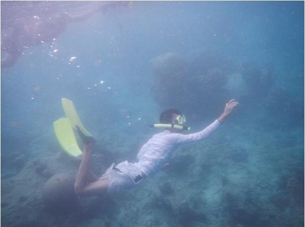 Underwater Bira Island